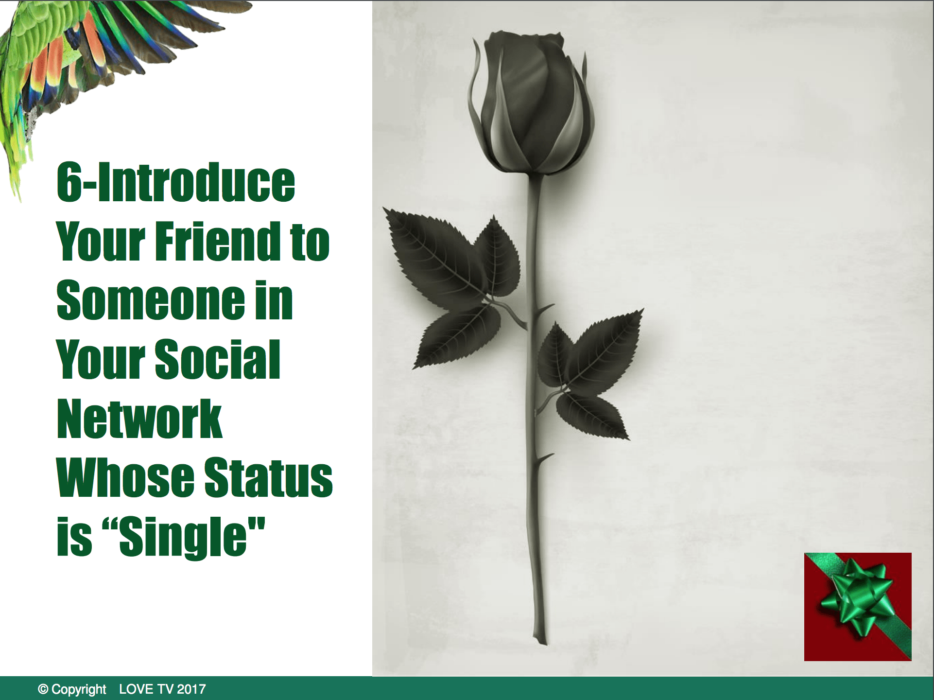 single friends social network